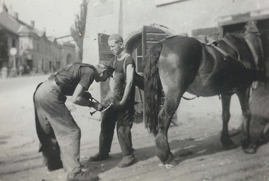 Polte Pernlochner mit Pferd